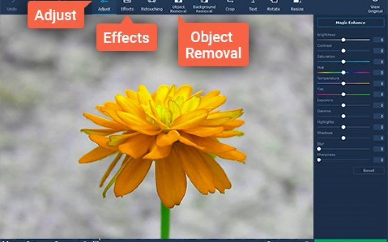 How to Get Rid of Unwanted Objects in a Photo with Movavi Photo Editor